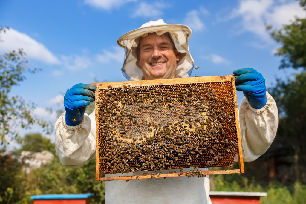 honey business
